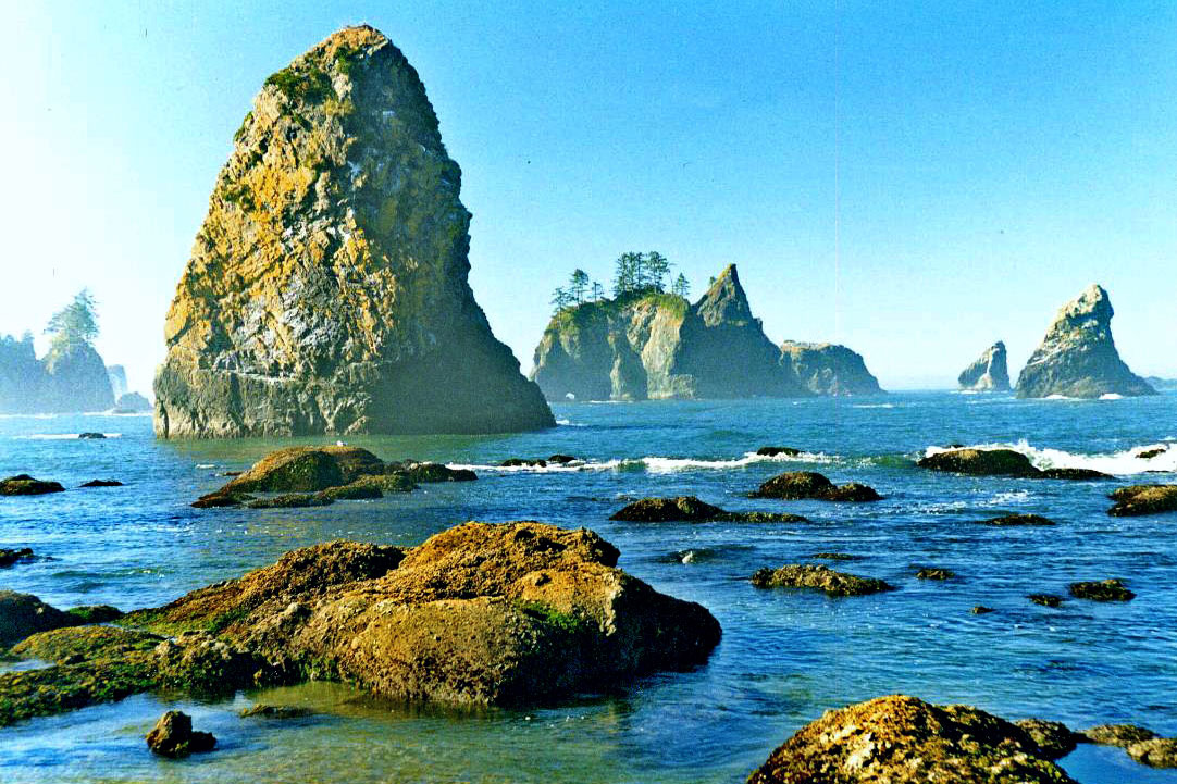 Photo of Olympic National Park