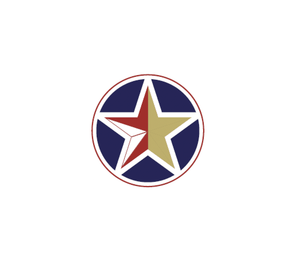 CXO Fellowship Program logo with star.